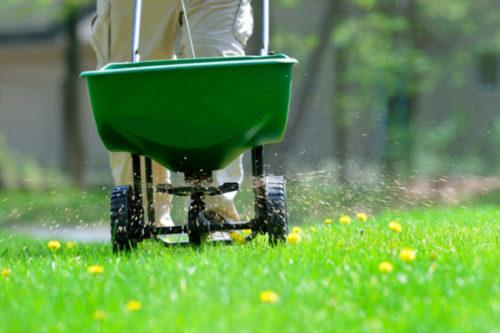Механические сеялки для травы